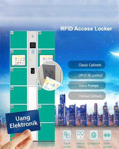 electronic smart locker